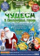 Новогоднее сказочное представление «Чудеса в Изумрудном городе»